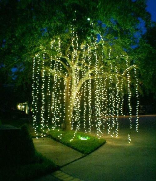 holiday-time-christmas-lightse4bf36ef12977963.jpg